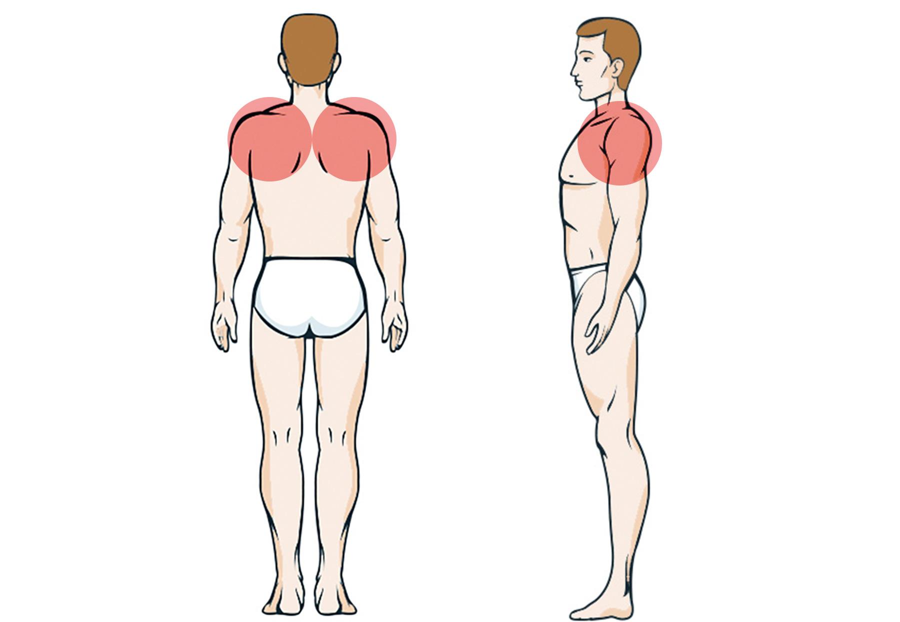 Schulterblatt schmerzen neben Schulter schmerzen